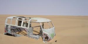 Beetle in de Sahara